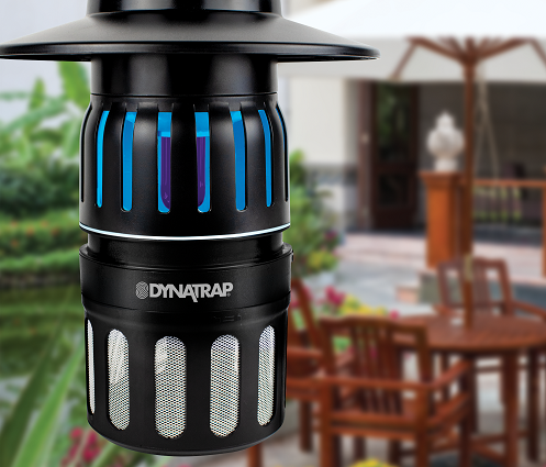 <small>DynaTrap Bug-Free Backyard Focus Group</small>