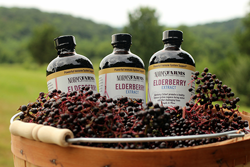 <small>Elderberry Smoothies Party</small>